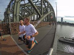 Gerolsteiner Brckenlauf 2016 (wuestenigel) Tags: kln cologne bridge runner running hahner brcken gerolsteiner brckenlauf sports laufen