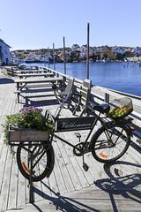 Lunch på Grundsund (Anders Sellin) Tags: sverige sweden västkusten sea ocean water vatten watersport sport kajak kayaking orust autumn höst 2016 rökeri friends grundsund westcoast