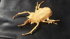 Elephant beetle by Shuki Kato (Faiz Kamel) Tags: insects shuki kato yellow origami elephant beetle