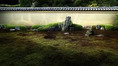 The old zen garden Ryogin-tei (maco-nonchR(on/off)) Tags: kyoto daitokuji ryogenin   ryogintei  dry landscape drylandscape garden moss muromachi   karesansui traditional oldest zen