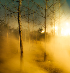 (inhiu) Tags: china longexposure light misty night nikon smoke beijing smoky bomb d800 inhiu