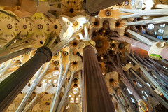 Forest of Sagrada Famlia (jensvins) Tags: church architecture basilica ceiling gaudi column sagradafamilia sagradafamlia antonigaud