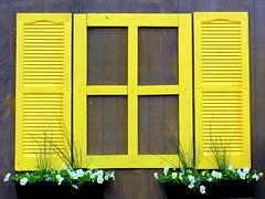 Window (THE Halloween Queen) Tags: 15challengeswinner thechallengefactory agcgiconchallengewinner transcendingiconofthequarter transcendingiconoftheyear3rdplace