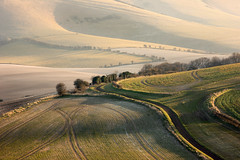 Kingston Ridge (Alan MacKenzie) Tags: england rural landscape sussex countryside eastsussex southdowns kingstonridge southdownsnationalpark