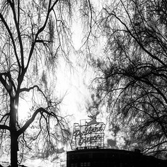 94 of 365 Made In Oregon (Tanner Wendell Stewart) Tags: trees blackandwhite bw panorama beautiful beauty vertical architecture clouds landscape photography blackwhite spring nikon nw northwest sunny panoramic portlandoregon pnw ptown downtownportland a21 madeinoregon portlandwaterfront portlandsign madeinoregonsign 365project chinatownportland oldtownportland voodoodoughnutsportland todaymightbe springtimecherryblossom a21campaign welcometoportlandsign northwestisbest 3652013 thea21campaign cityandarchitecture shoottheskies 2013365 tannerwendllstewart tannerwendell shoottheskies2013 portlandoregoncherryblossom