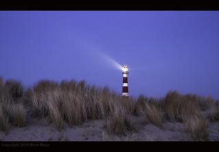 Bornrif in lights / Ameland / The Netherlands
