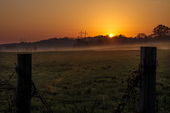 DSC02243-1 (Randy Burnett) Tags: fog sunrise sony amount a500 tamron1750