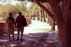 12-365 (redaleka) Tags: old sunset people sun tree love beach floral loving season walking happy evening spring hands couple shadows pavement walk candid air joy hats couples happiness skirt tourists romance jordan shirts together age romantic dreamy shorts holdinghands bags moment breeze stroll seniors aqaba