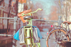"Vintage Lime Bicycle • <a style=""font-size:0.8em;"" href=""https://www.flickr.com/photos/41772031@N08/8685271375/"" target=""_blank"">View on Flickr</a>"