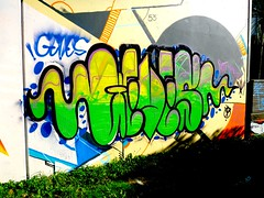 Geves (JaspaOner) Tags: graffiti wellington buffed rdm shoulda 2013 geves