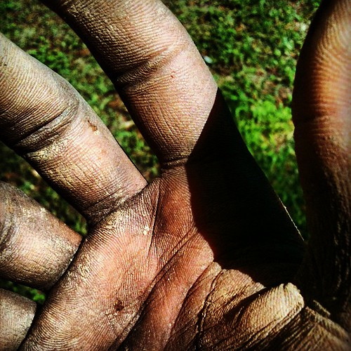 #dirtyhands #yardwork