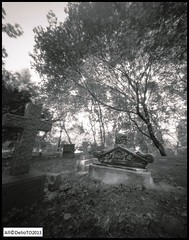 In 1856 on the shore of Lake Huron (DelioTO) Tags: wood city ontario canada cemetery landscape blackwhite may pinhole 4x5 adox25chs autaut f173 ro9
