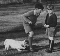 How to prevent dog bites (theirhistory) Tags: boy grass socks garden kid child jumper shorts wellies