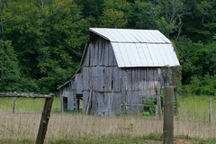 Barn in Abbeville County (FagerstromFotos) Tags: barn rustic country rural weathered tinroof fence farm abbevillecounty southcarolina trees gray green outdoors