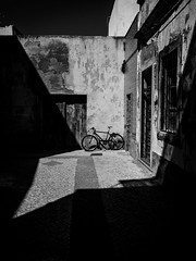 Bicicycle (Vitor Pina) Tags: streetphotography street streets moments monochrome momentos urban urbano rua contrast light shadows cityscape