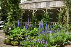 NYBG_132 (chiang_benjamin) Tags: nybg newyorkbotanicalgarden ny nyc bronx newyorkcity flowers trees arboretum plants green nature summer monetexhibit impressionism house
