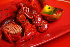 Around Austin: red on red (Jen's Photography) Tags: food eat edible red spoon stilllife seafood prawns shellfish crayfish october 2013 jensphotography austintexas austin texas city urban centraltexas atx capitol austintexascapitol nikon nikond80 d80 dslr object kitchen