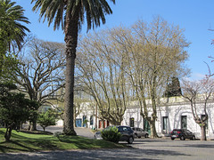 "Colonia del Sacramento: le quartier historique et sa Plaza Mayor <a style=""margin-left:10px; font-size:0.8em;"" href=""http://www.flickr.com/photos/127723101@N04/29623968221/"" target=""_blank"">@flickr</a>"
