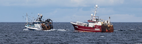 Trawlers Transcend BF 61 and Conquest BCK 364; Moray Firth, Scotland