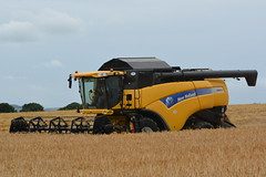 New Holland CX8070 Combine Harvester cutting Winter Barley (Shane Casey CK25) Tags: new holland cx8070 combine harvester cutting winter barley wb nh cnh yellow ballyhooly newholland grain harvest grain2016 grain16 harvest2016 harvest16 corn2016 corn crop tillage crops cereal cereals golden straw dust chaff county cork ireland irish farm farmer farming agri agriculture contractor field ground soil earth work working horse power horsepower hp pull pulling cut knife blade blades machine machinery collect collecting mhdrescher cosechadora moissonneusebatteuse kombajny zboowe kombajn maaidorser mietitrebbia nikon d7100