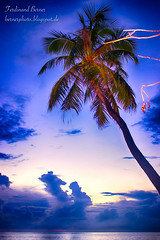 Maldives (ferdinandberner) Tags: maldives malediven sommersonnesonnenschein sonnenuntergang sunset palme palm sea ocean vacation dream trauminsel paradise paradis vis extraordinar maldive concediu corazon romantic romantisch picoftheday photooftheday mojito berner bernerphoto bestoftheday vedere postcard postkarte nupunetoateprostiile murocurioso mariadolores summer sommer varalasoare