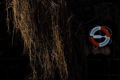 Salvavidas y vegetacin salvaje (mandoft) Tags: rama sweden stockholm salvavidas sombra estocolmo suecia stockholmsln se