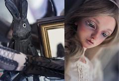 [Rabbit]  (Koala Krash) Tags: bjd balljointdoll balljointeddoll doll ball joint resin switch mara koalakrash card antics game toy vintage rrabit rabbit