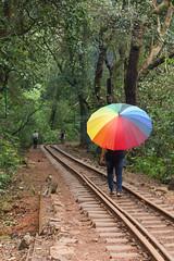 Matheran-5537 (Satish Chelluri) Tags: satishchelluri satishchelluriphotography matheran maharastra umbrella mansoon