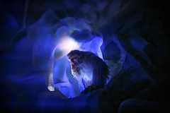 Always angry snow monster, Harold (the second) (Mstraite) Tags: yeti matterhorn disney diesneyland dark night fast coaster rollercoaster ride monster snow snowman harold canon tamron california