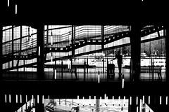 The woman with the suitcase (pascalcolin1) Tags: paris13 seine femme woman lumires lights lampes lamps photoderue streetview urbanarte noiretblanc blackandwhite photopascalcolin