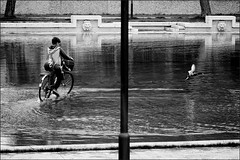 caccia all'anatra (kocinskij) Tags: bw water bicycle bn verona acqua bicicletta symmetries