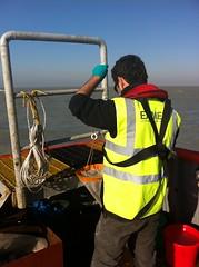 Zooplankton Trawl