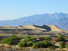 Death Valley Sand Dunes (misiekmintus) Tags: california travel usa landscape us dunes deathvalley sandsunes