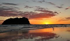 Moturiki Island Sunrise (Kiwi-Steve) Tags: newzealand beach nikon nz tauranga surise mountmaunganui nikond90 moturikiisland mygearandme