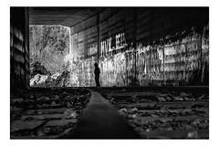 Sur un rail (Gabi Monnier) Tags: bw france silhouette canon flickr tag hiver rail graph tunnel nb jour provence abandonn auriol provencealpesctedazur exterieur valdonne canoneos600d gabimonnier