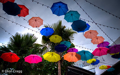 Colours Fly (Dion Cragg) Tags: color colour umbrella thailand bangkok parasol umbrellas parasols brolley
