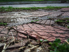 Pressed (kaylynmn) Tags: old red macro brick grass america pattern sidewalk kansas aged distress rivertown redbrick pavingstones pavestone