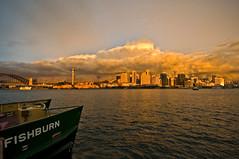 _ASC5655 (amblerpix) Tags: sunset horizontal reflections day dusk sydney australia newsouthwales balmain sydneyharbour stormclouds ferryboat sparklingwater sunsetcolours sydneycityskyline
