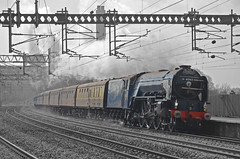Tornado through Rugeley (southstaffsrail) Tags: thecathedralsexpress rugeleytrentvalley 60163tornado