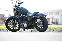 Dan's Harley (K McGuckin) Tags: new canon iron harley rochester 5d hog davidson 70200 matte 883 2013