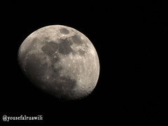 moon pic (yousefalruawili) Tags: moon mountain tree canon shoot shot natural pic moo mon tribe  p500 d300               sx40  p380     p520  sx50  sx30  d6500