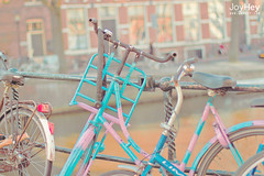 "Striped Bicycle • <a style=""font-size:0.8em;"" href=""https://www.flickr.com/photos/41772031@N08/8685271519/"" target=""_blank"">View on Flickr</a>"