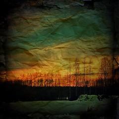 Picfx #sunset #sky #color #colors #snow... (TittaBilder) Tags: uploaded:by=flickstagram instagram:photo=396555543023717576271432306 picfx sunset sky color colors snow winter igsweden uppsala solnedg tr bj f sol vinter sn instagram iphone