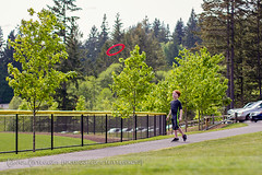 Ryan (tanya_little) Tags: park family boy nature grass childhood sport canon outside outdoors 50mm ginger washington kid child play path f14 joy young happiness naturallight redhead frisbee redhair throw gigharbor wideopen t2i tanyalittle sehmelhomesteadpark