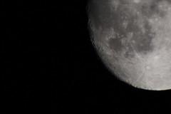 Watching for the alien invasion (Notkalvin) Tags: moon night canon space tripod luna aliens craters crater cropped seti tycho marehumorum lunarsurface shickard marenubium mikekline michaelkline notkalvin 2xtelephotoconverter myhandsarentthatsteady notkalvinphotography
