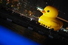 () Tags: ed duck olympus rubber f18  omd 75mm em5