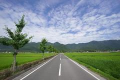 road (tyodai) Tags: japan shiga   summer    7 ilce7 super wideheliar 15mm f45 aspherical iii