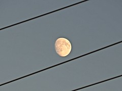 'Twixt and B'Tween  (Explore 20/08/2016) - (ikan1711) Tags: moon moonmadness moonlight moonmoods moonshots moonandhydrowires twixtandbtween allmoons allmoonshots moonoutlines hydrowires sky skyline dusk wires outdoors outdoor outlines explore
