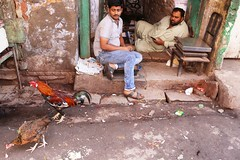 They Are Sad Because They Will Be Eating Them Tonight (Mayank Austen Soofi) Tags: delhi walal food chicken they are sad because will be eating them tonight