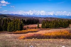 Nothing prettier than our Mother Nature.. (PrachiVerma) Tags: wyoming teton grandtetonnationalpark usa landscape mountain peak summer